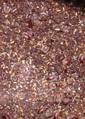 Beetles atop Chili Powder