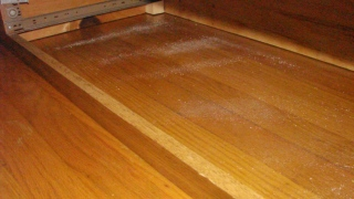 Diatomaceous Earth under bed