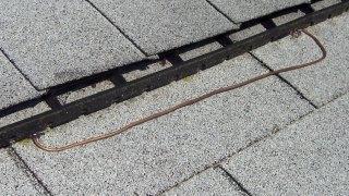 Anti-fungal copper wire test