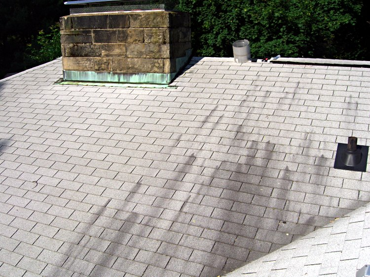 Roof Work Vent Stack Gaskets And Shingle Fungus The