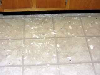Shattered Corelle plate on floor