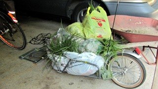 YAK Bike Trailer - 55 lb of grass
