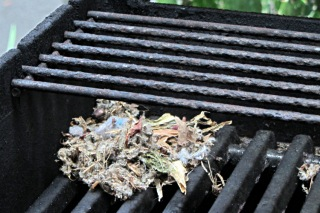 Mouse nest in grill - foundation
