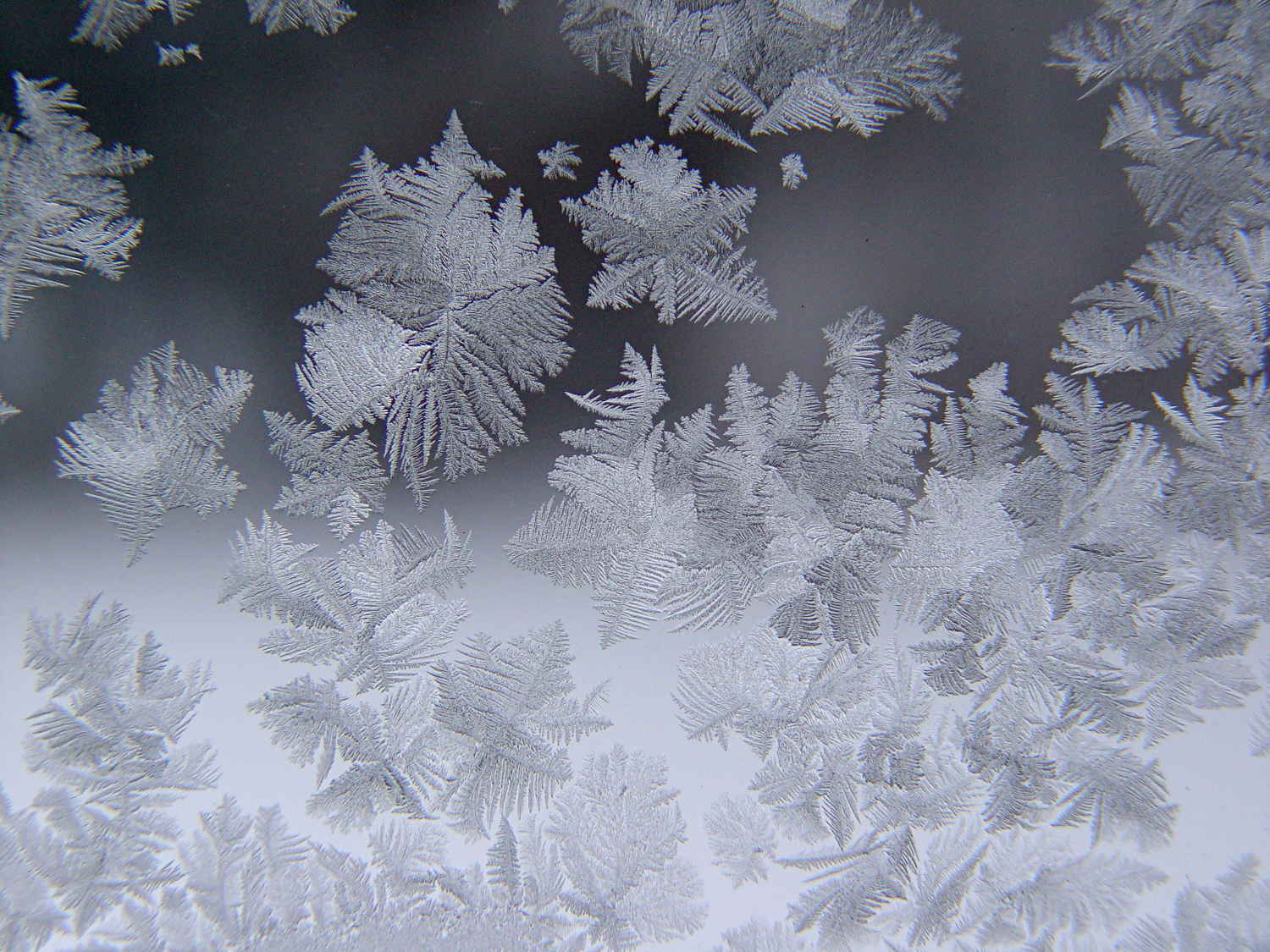 Monthly Image Ice Crystals The Smell Of Molten Projects