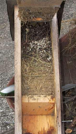 Bird box - stacked nests