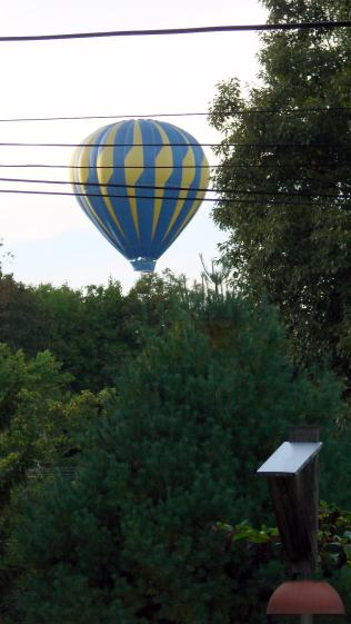 Hot Air Balloon - Red Oaks Mill