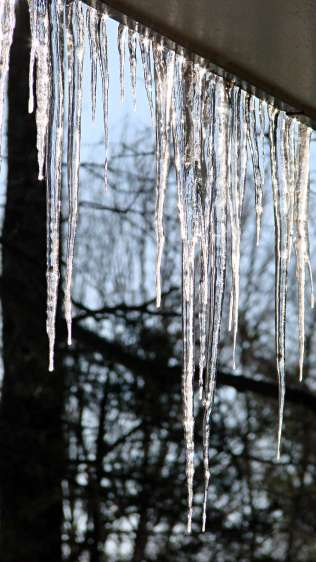 Icicles - backlit
