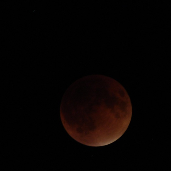 Supermoon eclipse 2015-09-27 2250 - ISO 125 2 s