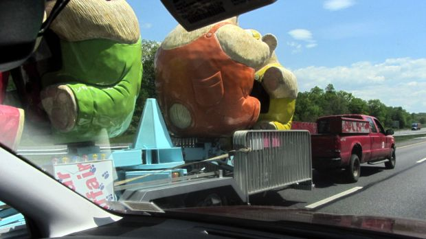 Bears on I-87 - passing