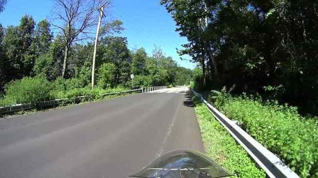 Jackson Rd - Leaf Impact - 2016-06-30 - 0337