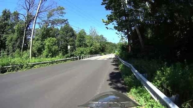 Jackson Rd - Leaf Impact - 2016-06-30 - 0373