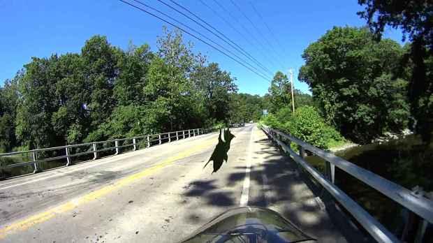 Jackson Rd - Leaf Impact - 2016-06-30 - 0508