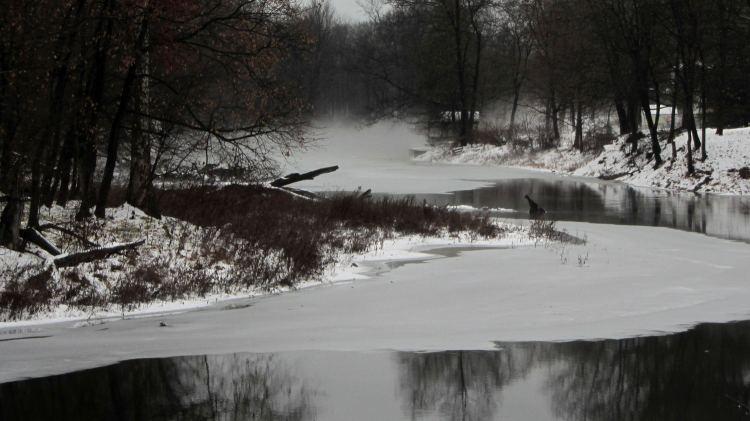 Red Oaks Mill Dam 2016-12-18 - upstream fog