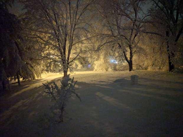 Snowfall - Front yard