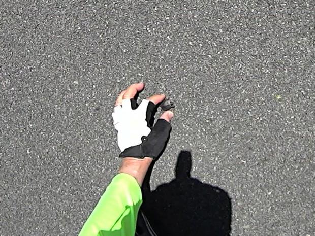 Tiny Turtle Dorsal - Rail Trail - 2018-05-23
