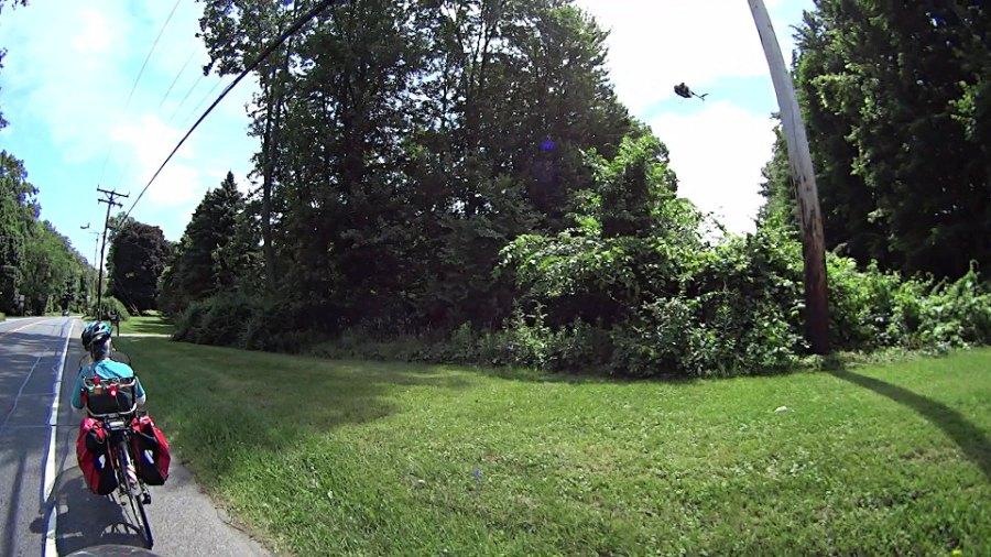 Chopper over power lines - Vassar Rd near Jackson Dr - 2018-06-11