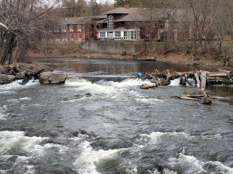 Red Oaks Mill Dam - 2018-04-08