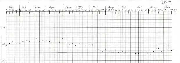 Weight Chart 2017 - Ed