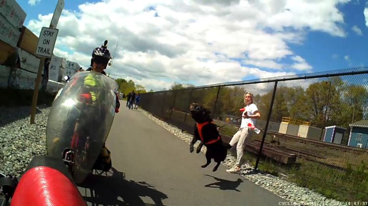 Empire State Trail - Dog Lunge - 2021-05-12 - 7