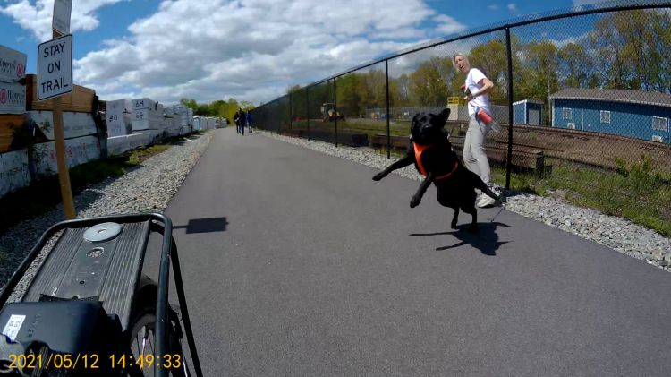 Empire State Trail - Dog Lunge - 2021-05-12 - 8