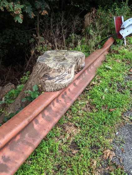 Tree stump around guide rail