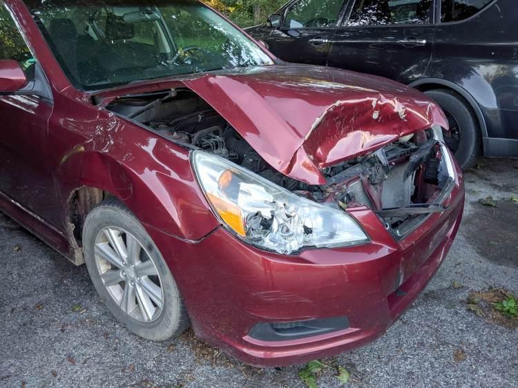 Deer Collision - front end damage