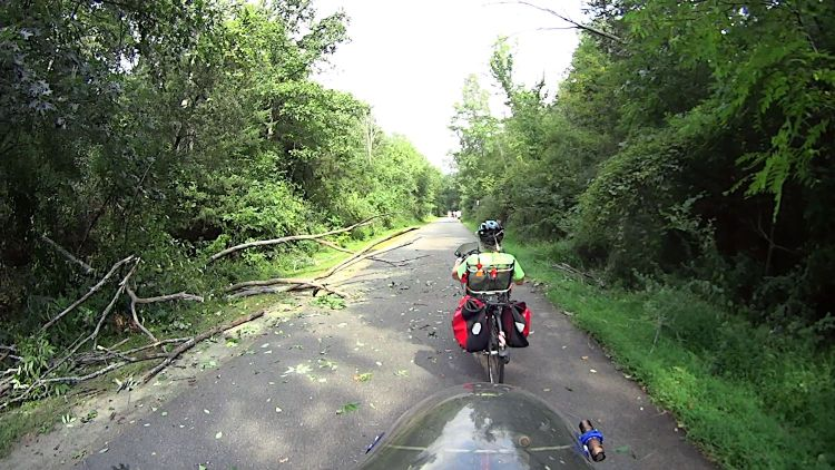 Rail Trail - fallen tree - cleared - 2021-09-15
